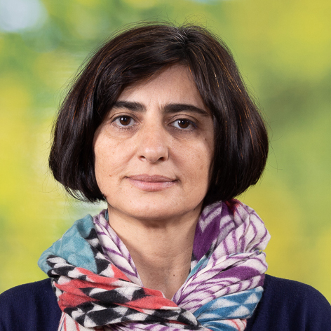 Anna Barseghian